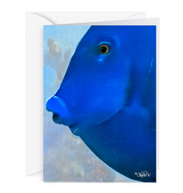 By The Seas-N Greetings Blank Note Card - Cash - Gift Card Holder - Blue Fish II