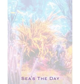 By The Seas-N Greetings Sea's The Day Notepad w Ocean Reef Design Memo Pad