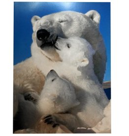 Mothers Day Card Polar Bears