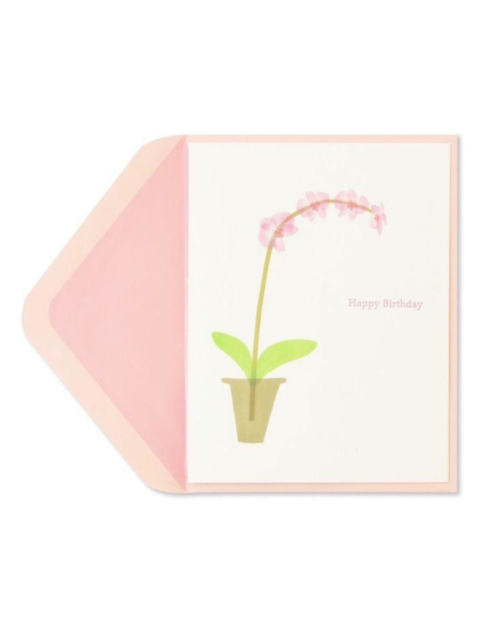 PAPYRUS® Birthday Card Pink Orchid