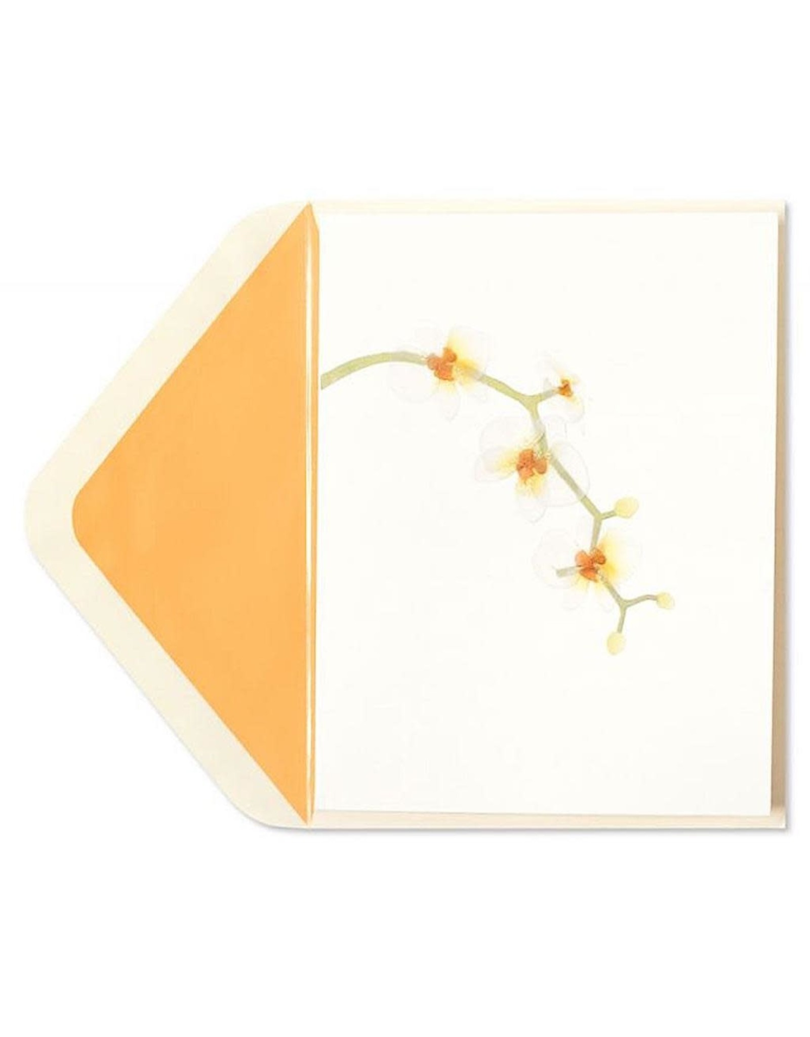 New Papyrus 'blank' card