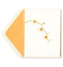 PAPYRUS® Blank Card White Orchids
