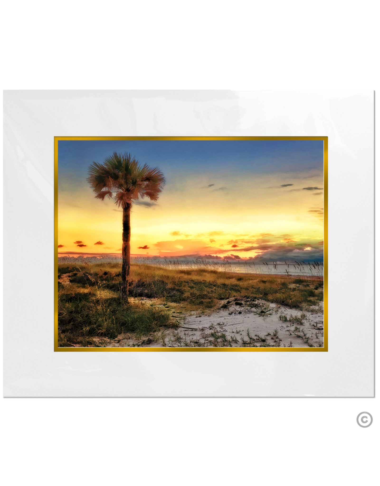 Maureen Terrien Photography Art Print Amelia Island Sunset 8x10 - 11x14 Matted