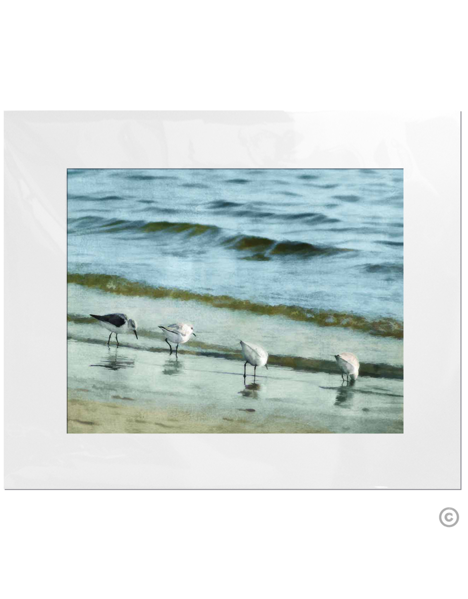 Maureen Terrien Photography Art Print 4 Sandpipers I 11x14 - 8x10 Matted