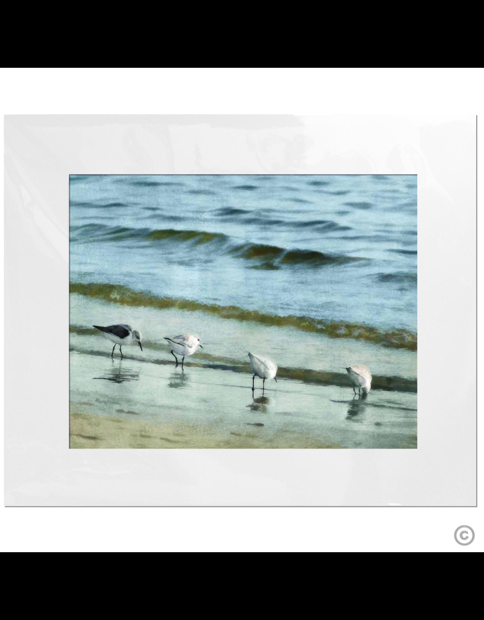 Maureen Terrien Photography Art Print 4 Sandpipers I 11x14 - 8x10 Matted