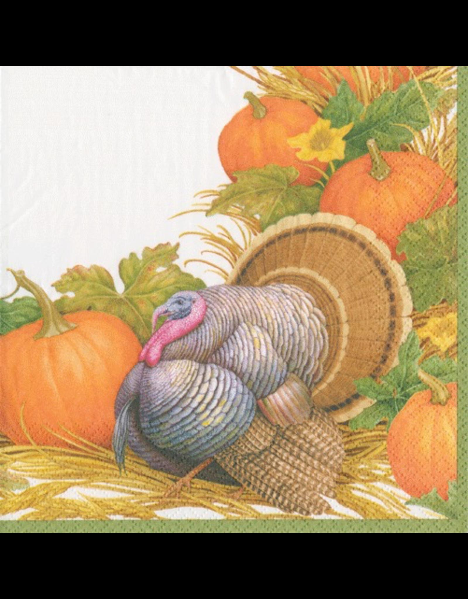 Caspari Fall Thanksgiving Paper Dinner Napkins 20pk Harvest Turkey