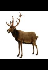 Animated Talking and Singing Reindeer LIfesize 53Lx60H
