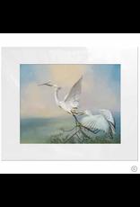 Maureen Terrien Photography Art Print Egret Taking Off 11x14 - 8x10 Matted