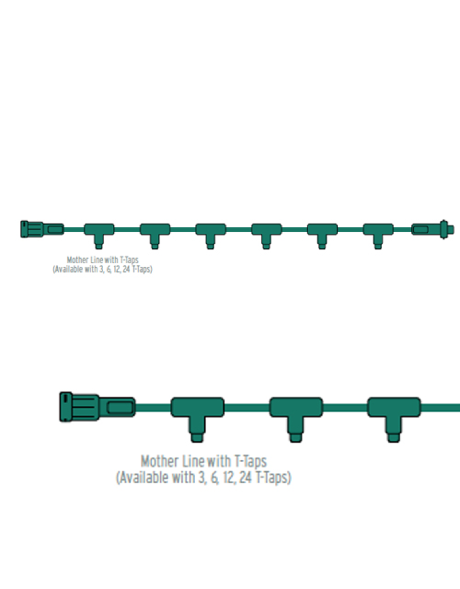 6ft Mother Line 12 Taps White Wire