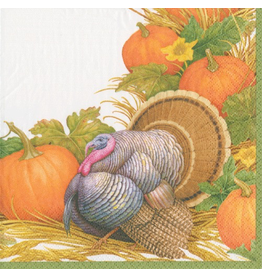 Caspari Fall Thanksgiving Paper Cocktail Napkins 20ct Harvest Turkey