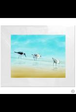 Maureen Terrien Photography Art Print 3 Sandpipers II 11x14 - 8x10 Matted