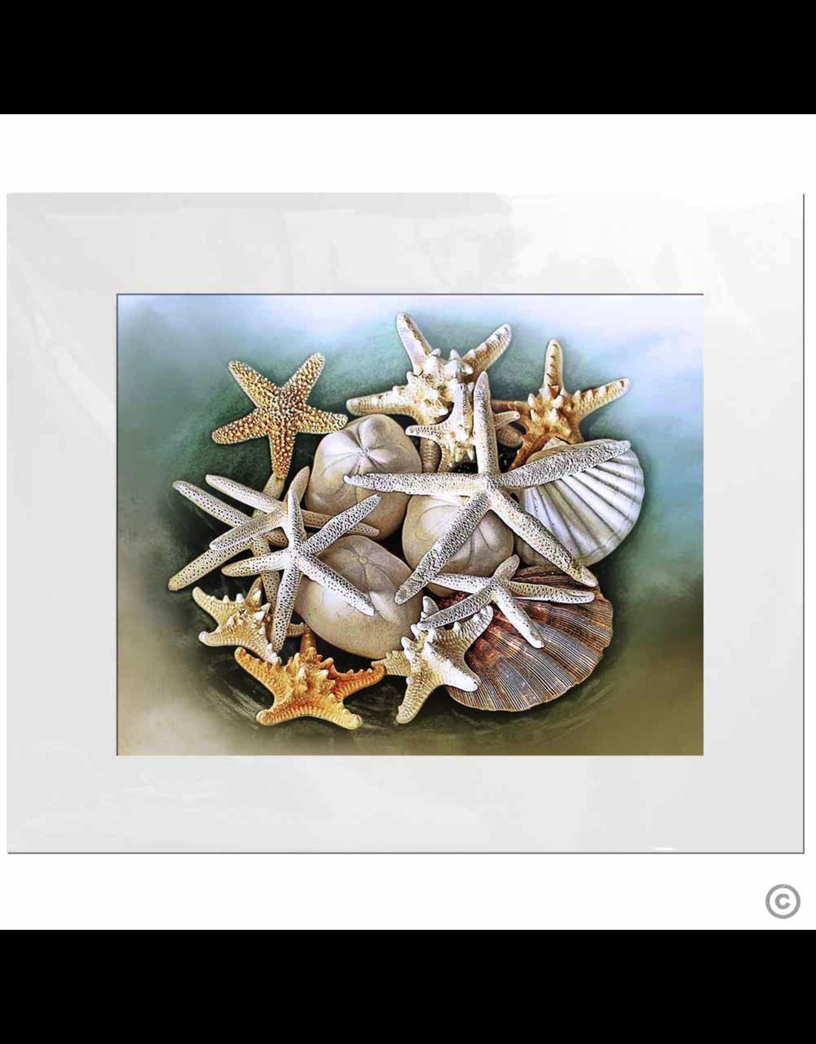 Maureen Terrien Photography Art Print Memories of the Beach 11x14 - 16x20 Matted