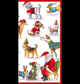 Caspari Christmas Money Holder Card Waiting for Santa