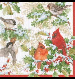 Caspari Christmas Paper Cocktail Napkins 20pk Birds And Greens
