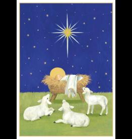Caspari Baby And Lambs Boxed Christmas Cards 16pk