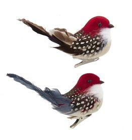 Kurt Adler Bird Clip-On Ornaments 2 Assorted