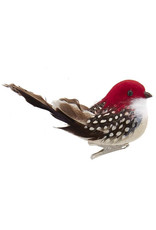 Kurt Adler Bird Clip-On Ornament With Brown Tail Feathers