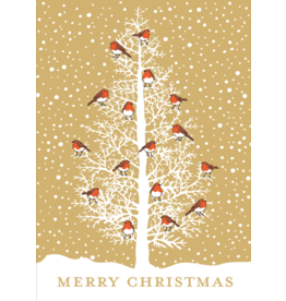 Caspari Robins In Tree Boxed Christmas Cards 16pk