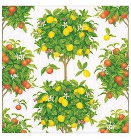 Caspari Paper Cocktail Napkins 20pk Citrus Topiaries