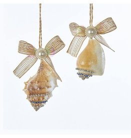Kurt Adler Seashells With Gems Pearl And Ribbon Bow Ornament 2 Assorted