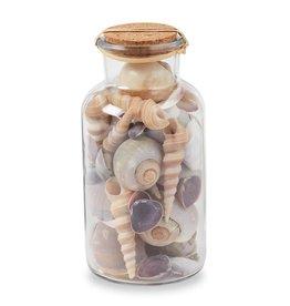 Mud Pie Decorative Mixed Shells In Jar