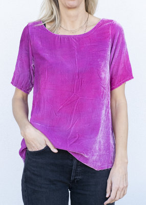 Love Tanjane Velvet Tee- 2 colors