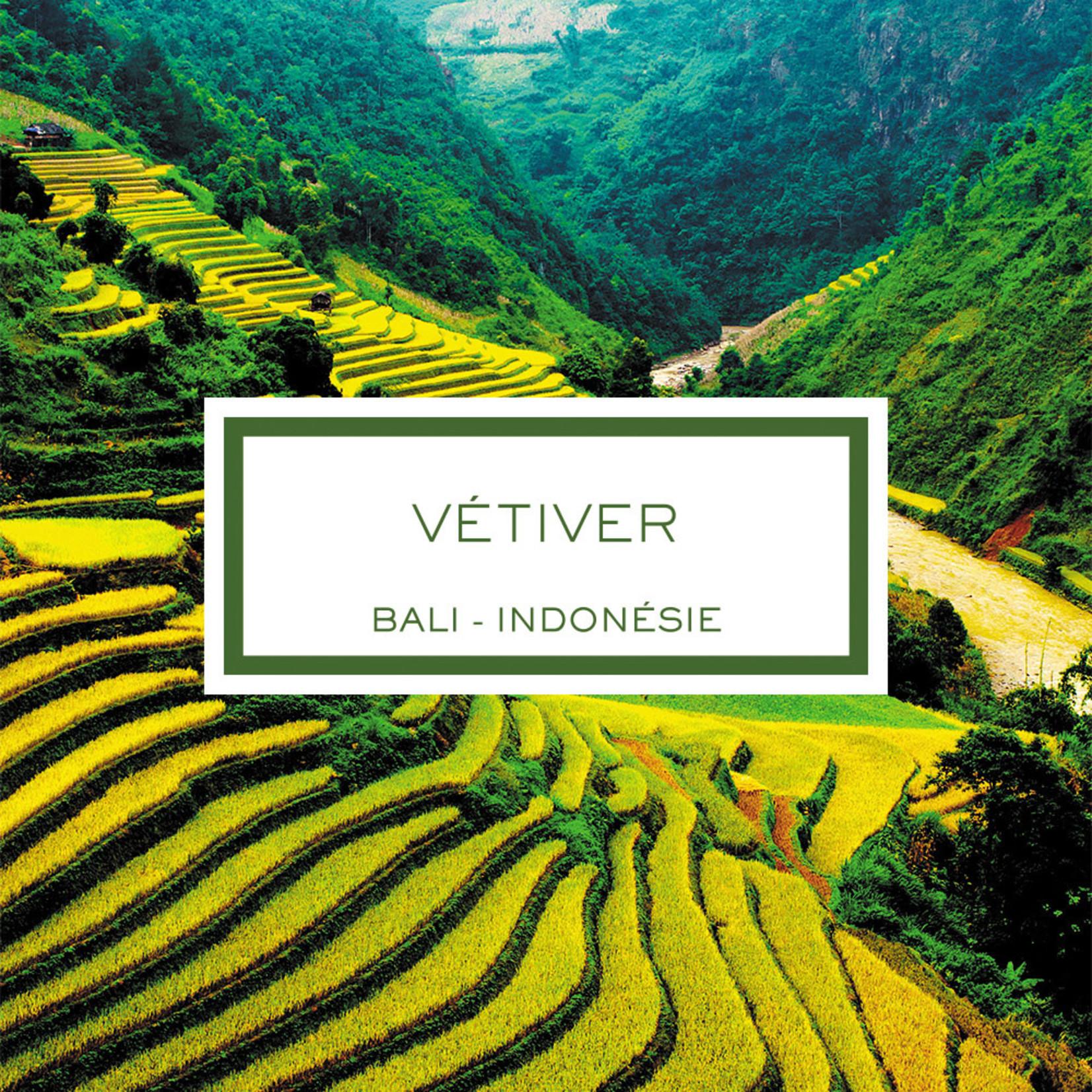 Lalique Vetiver