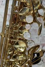 Yanagisawa Yanagisawa AW02 Professional Alto Saxophone Bronze Body