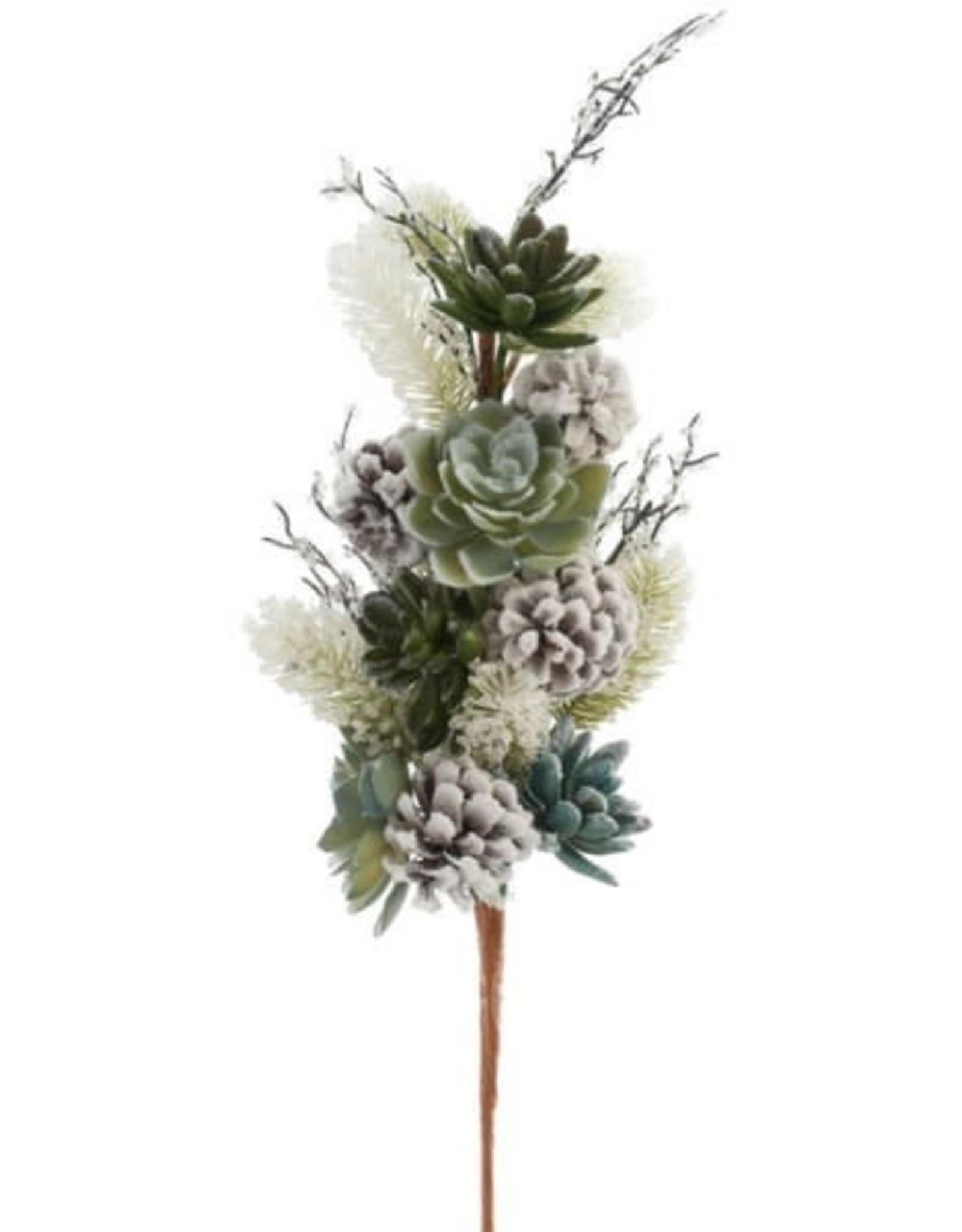 Branche décorative - Succulentes & cocottes 25''