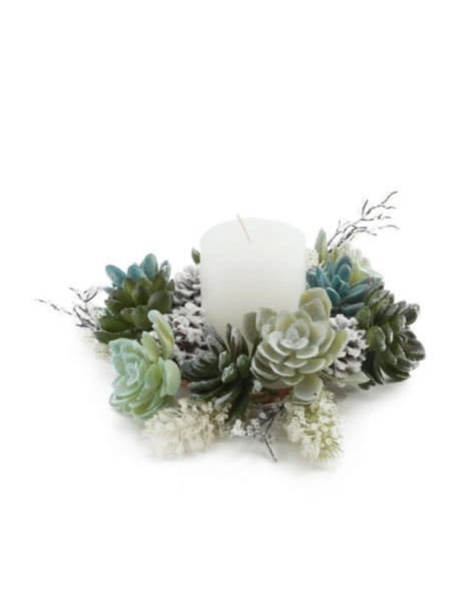 Déco bougie - Succulentes & cocottes - Petit