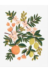 Rifle paper co. Affiche 8x10 - Citron floral