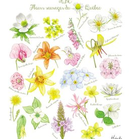 Affiche 8x10 - Fleurs sauvages