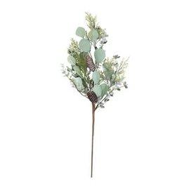 Branche - Sapin & Eucalyptus