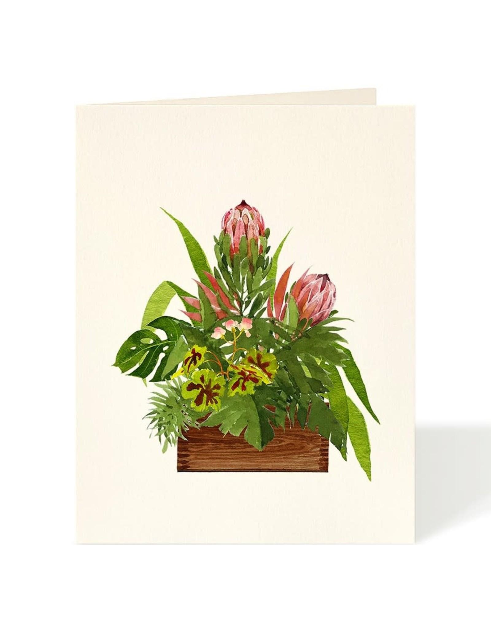 Carte de souhaits - Proteas