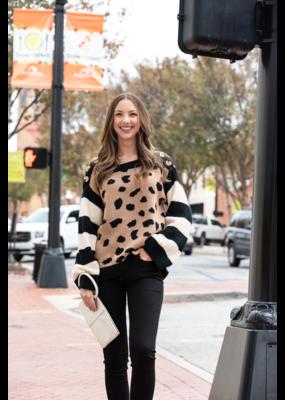 Entro Leopard Pullover Sweater w/ Striped Sleeves - Winona