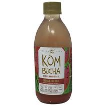 Kombucha Sandía Fresca Salvaje BV 355 ml.