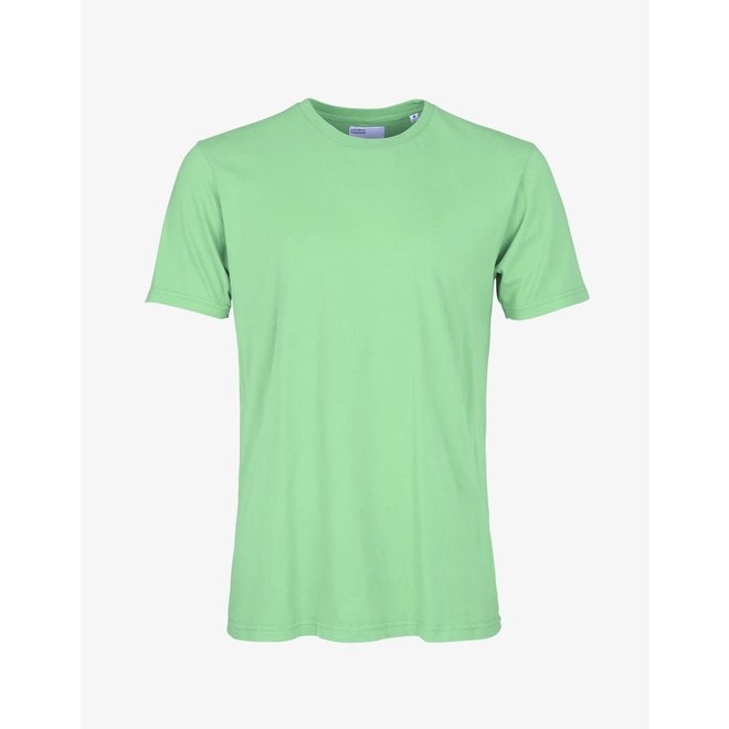Classic Organic Short Sleeve T-Shirt  in Faded Mint