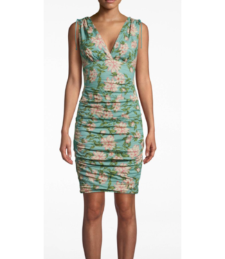 nicole miller Spring dream dress