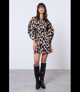 Italiano Leopard Dress