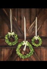 Park Hill Preserved Boxwood Wreath/Ribbon Small