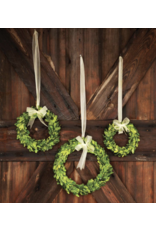 Park Hill Preserved Boxwood Wreath/Ribbon Medium