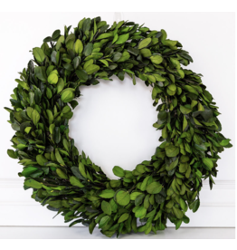 "Adams & Co. 20.5 "" Preserved Boxwood Wreath"