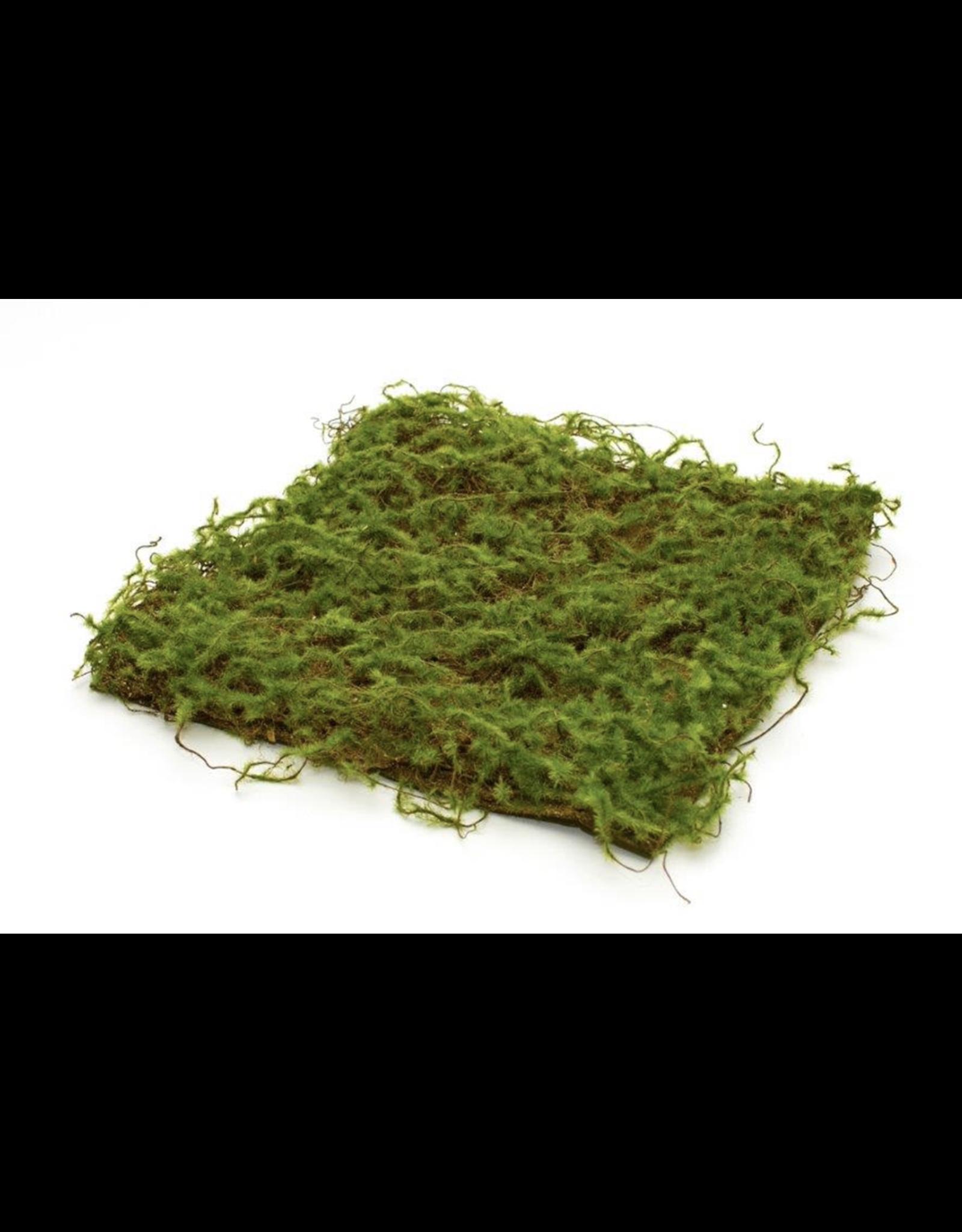 "Melrose Moss Pad 12.5"""