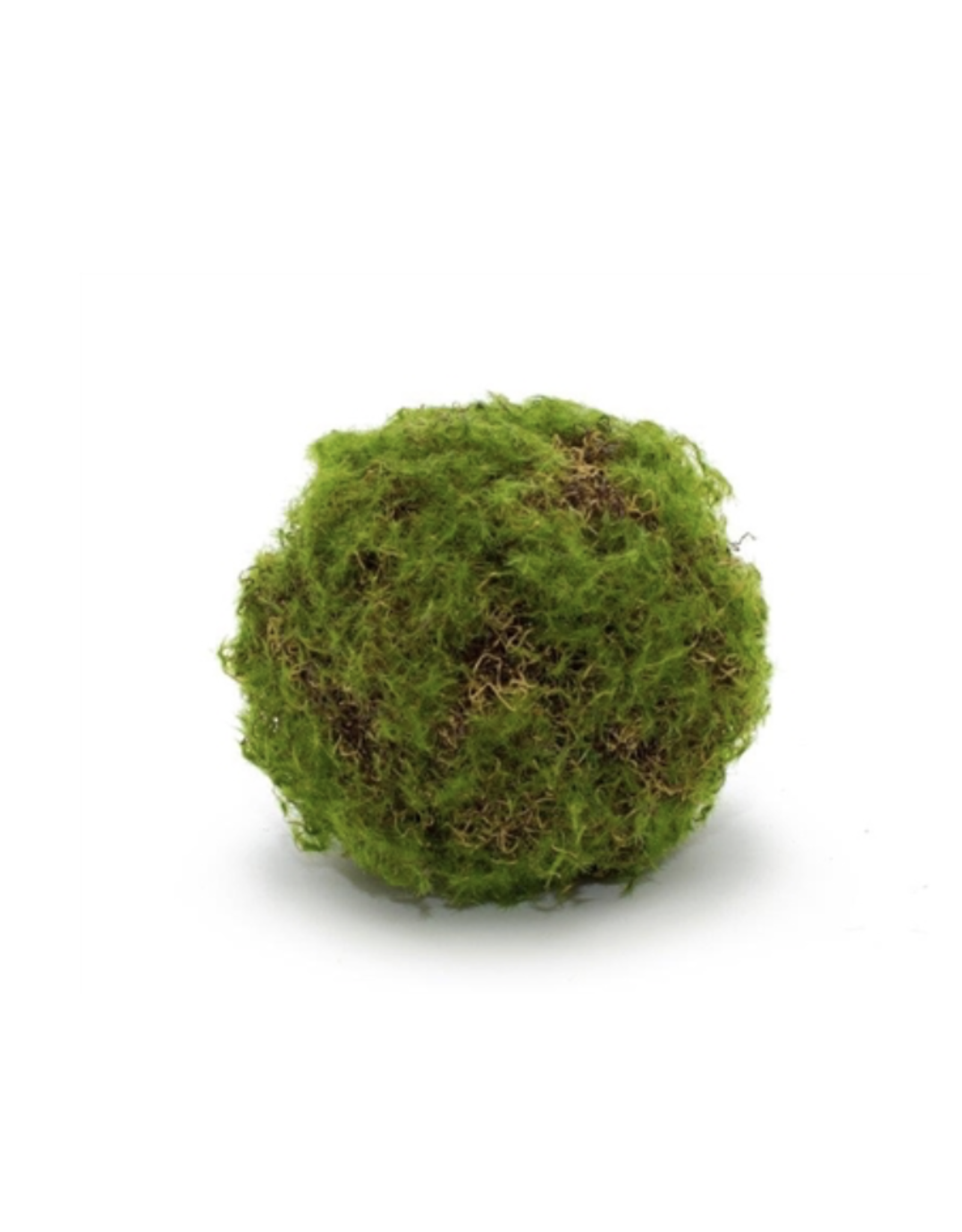 "Melrose Melrose Moss Ball 4.75"""