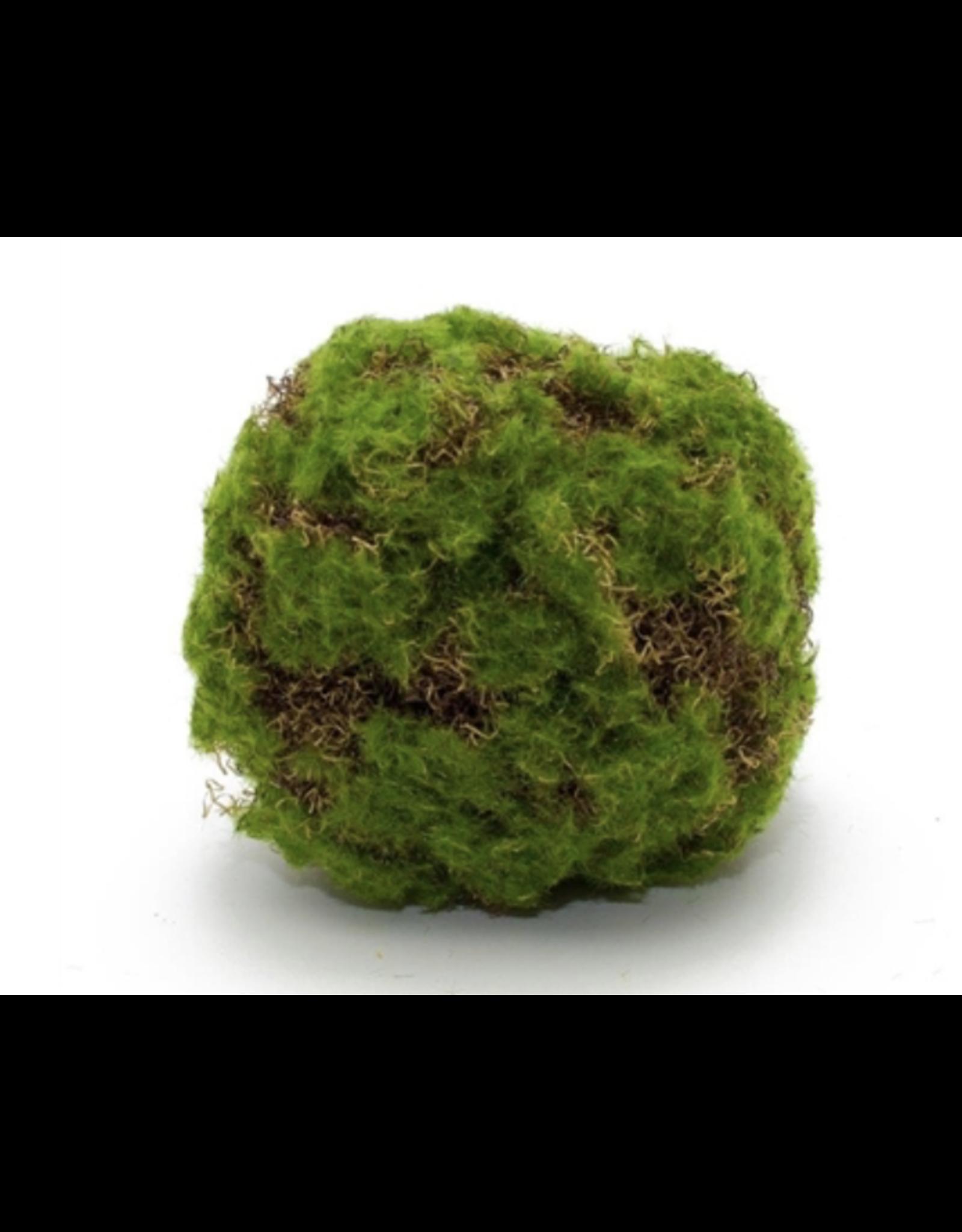 "Melrose Melrose Moss Ball 5.5"""