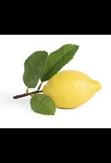 Park Hill Lemon with Leaf