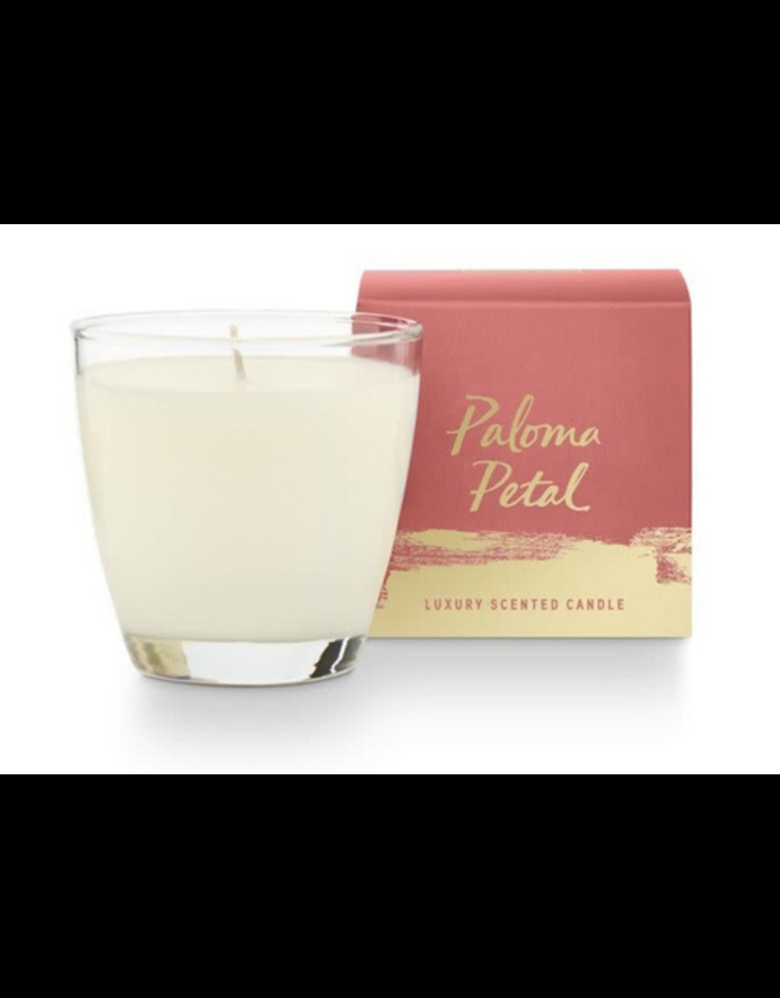Illume Illume Boxed Glass Candle