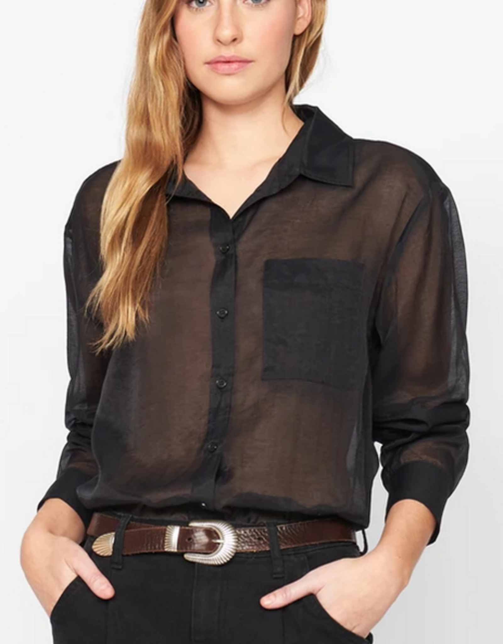 Sanctuary Sheer Bliss Button Down Top