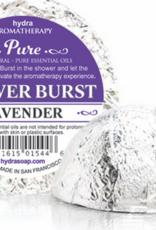 Hydra Shower Burst, Lavender