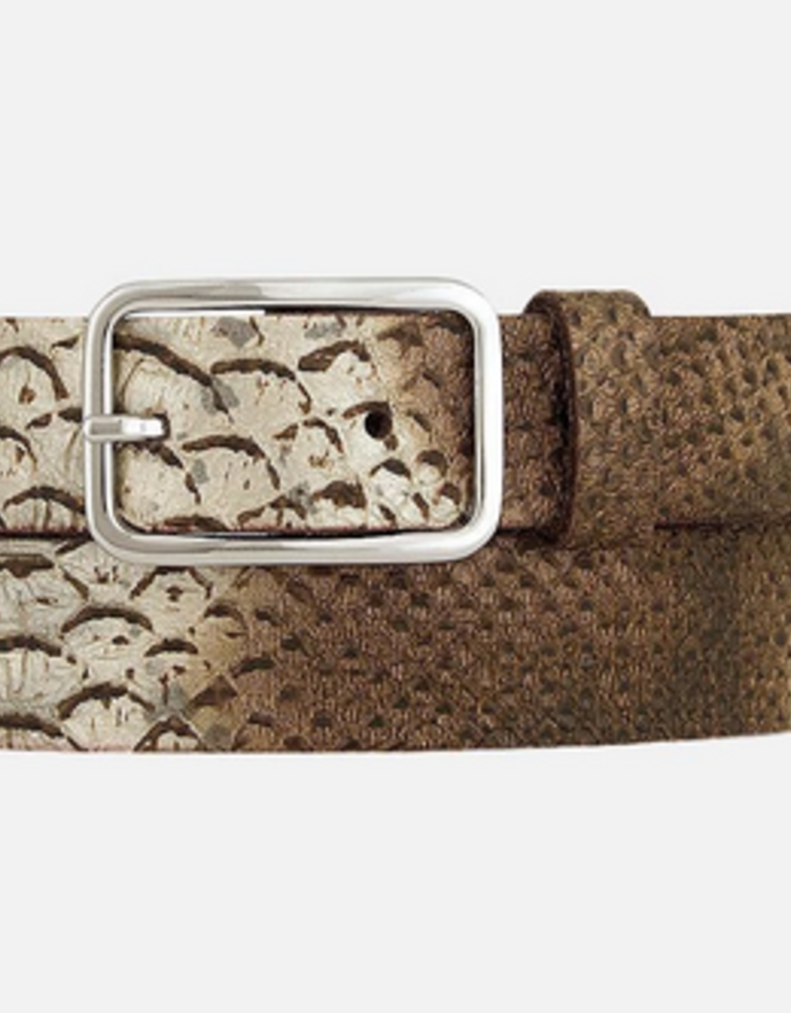 Amsterdam Heritage Cara Metallic Snake Print Leather Belt